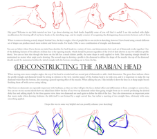 (De)Constructing the Arabian Head by Ehetere