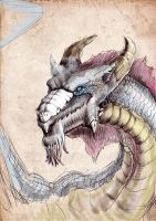 dragon by gailee