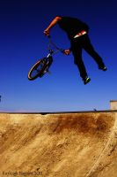Tailwhip by Stolzer