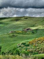 Shades of Green by Fabiuss