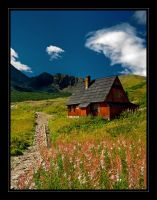 Traditional Hut in Tatra II by ArcziPL