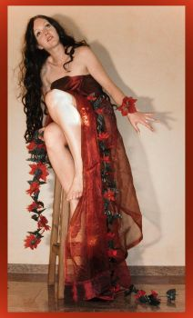 red passion 31 by Lisajen-stock