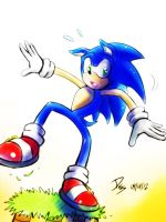 One Hour Sonic 001 - Sonic Falling by ElsonWong