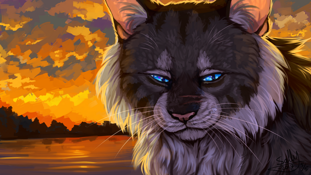 Hawkfrost by Sally-Ce
