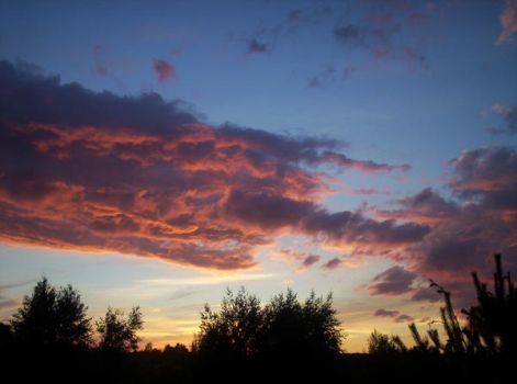 Another Sky Photo II by sapromind