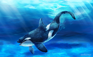 Happy Orca by LeoKatana