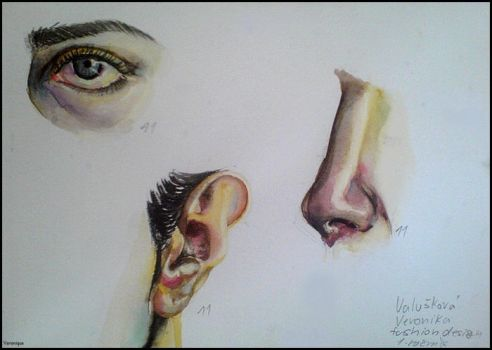 Parts of the face (eye, ear, nose) by Verenique