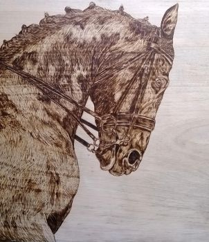 horse portrait pyrography woodburning by Art-Caren