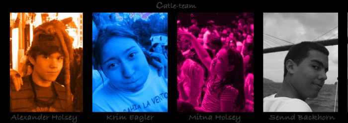 Here is the Catle-team by Catlepuck-team