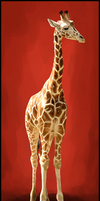 That there be a Giraffe by xamberelliex