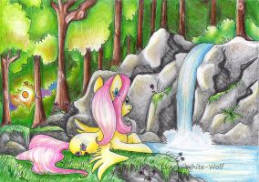 In the woods by Lunar-White-Wolf