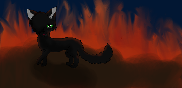 Hollyleaf's Sadness by ScourgesKit