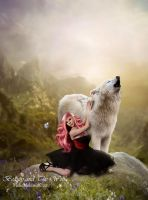 Beauty and the Wolf by MelieMelusine