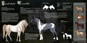 Linderhofer Warmblood - Breed [CLOSED] by Pestdoktor