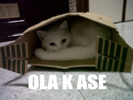 OLA K ASE by Whiterisu