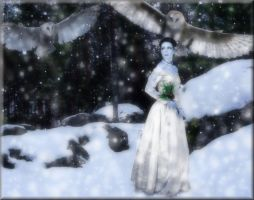 Lady Of The Snow Owls by TheFantaSim