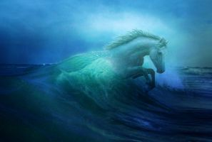 Seahorse by Misty-B6