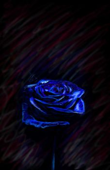 Blue Rose by JacquelineDeath