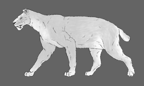 Homotherium latidens, the scimitar-toothed cat by WSnyder