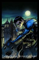 Nightwing by irongiant775