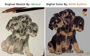 Cerberus Puppy Digital Color Concept by KeithMGuthrie
