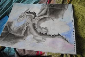 dragon C: by FixSmile