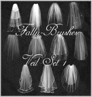 Veil Brushes Set 1 by Falln-Stock