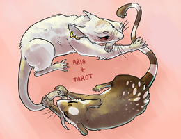 Rat and Mouse by Spookapi