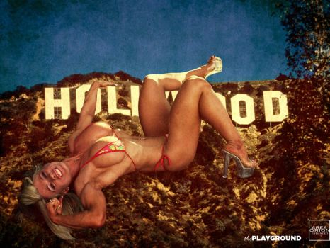 The Playground: Gone Hollywood Too by areaorion