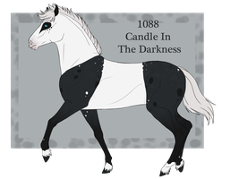 1088 Candle In The Darkness by RR-Nordanners
