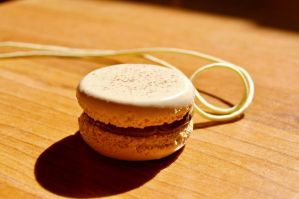 Macaron. by Tr0ubled-g0ldfish