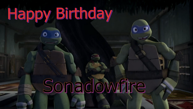 Happy Birthday Sonadowfire by ShadowandEspio1