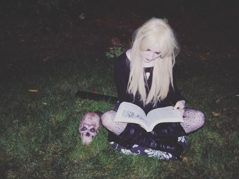 Encyclopedia of Witches and Witchcraft by blissfulshadow
