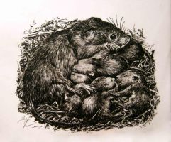 Rats Family by Liebegaby