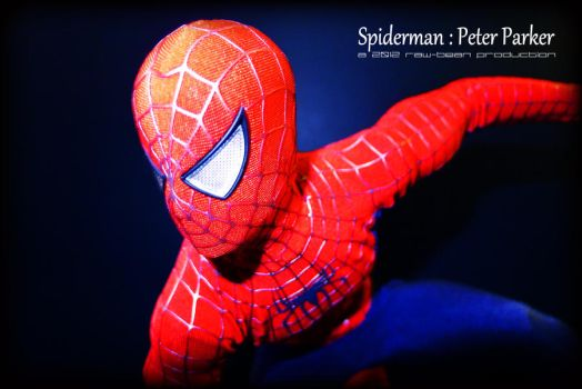 Hot Toys - Spiderman 2 by jaysquall