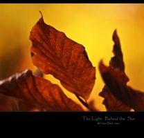 The Light Behind the Sun by clarablick