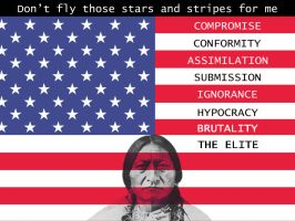 Stars and Stripes by berner