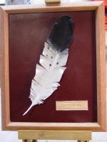 Feather by larrysleather