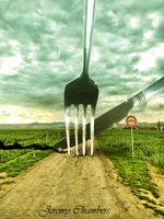 Fork in the Road by Jeremy-chambers