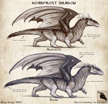 Hoarfrost Dragon Concept Commission by EmilyStepp