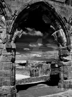Abbey View at Whitby (infrared) by GaryTaffinder