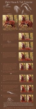 Mane and Tail Tutorial. by falitna