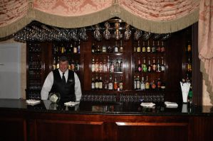 Bartender and Bar Stock by FairieGoodMother