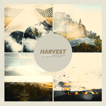 Texture Pack #19 - Harvest by RavenOrlov