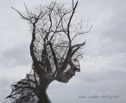 I am full of dead branches by kevron2001